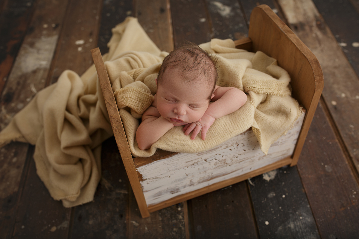 Sharyn Safi, Unique Images, Newborn Gallery